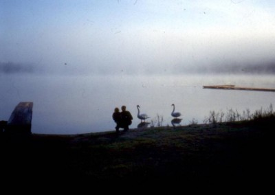 1991_1_45