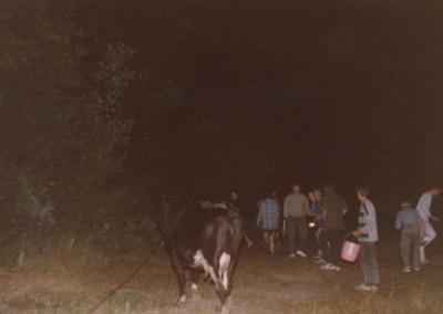 1991_2_49