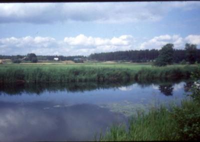 1991_3_16