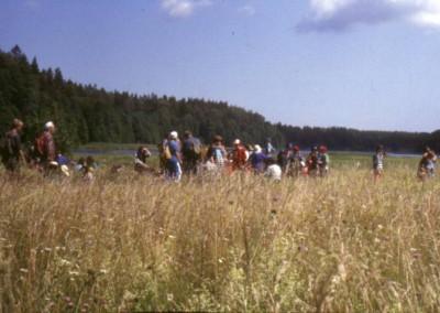 1993_1_44