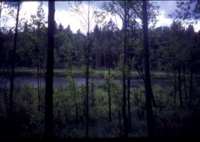 1997_1_36