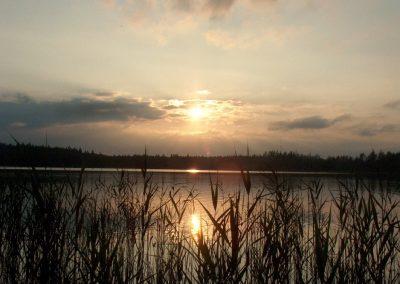 2004_przyroda_11