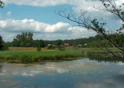 2004_przyroda_12
