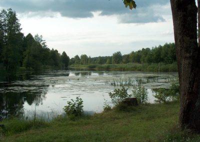 2004_przyroda_14