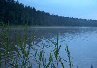 2005_przyroda12