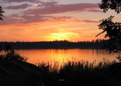 2005_przyroda29