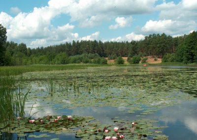 2005_przyroda3