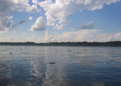 2005_przyroda32