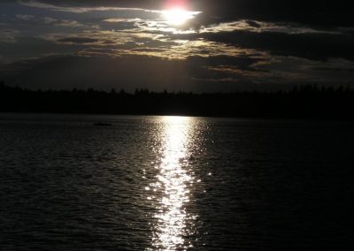 2005_przyroda42