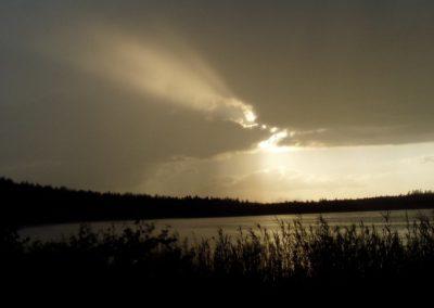 2005_przyroda43