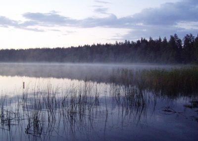 2005_przyroda45