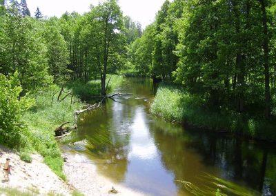 2005_przyroda56