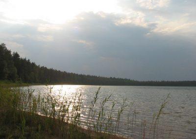 2006_przyroda25