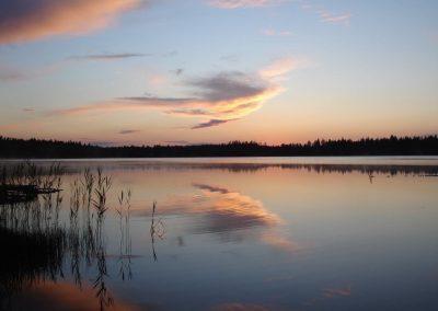 2007_przyroda1