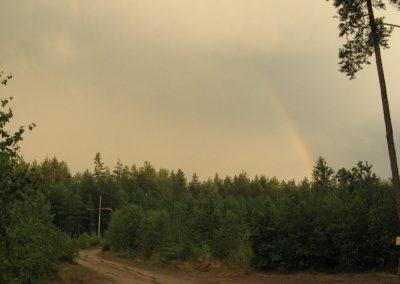 2007_przyroda12