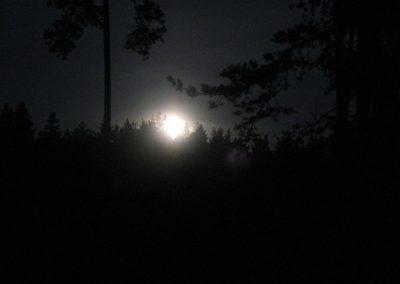 2007_przyroda15