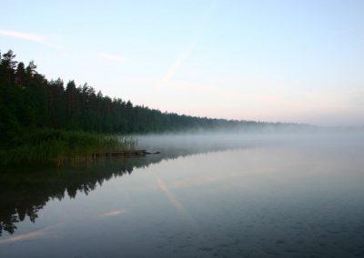 2007_przyroda17