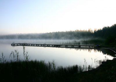 2007_przyroda19