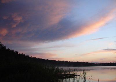 2007_przyroda2