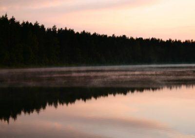 2007_przyroda21