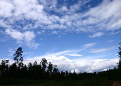 2007_przyroda22