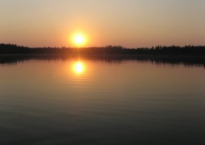 2007_przyroda31