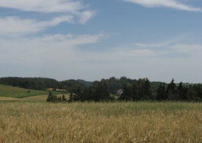 2007_przyroda32