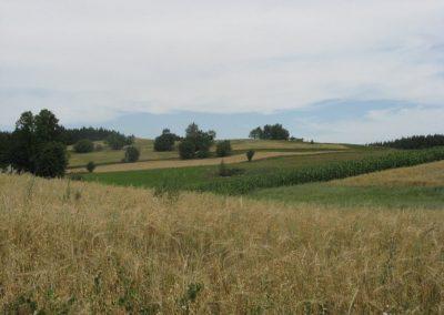 2007_przyroda34