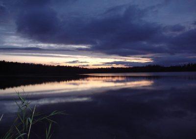 2007_przyroda4