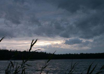 2007_przyroda53