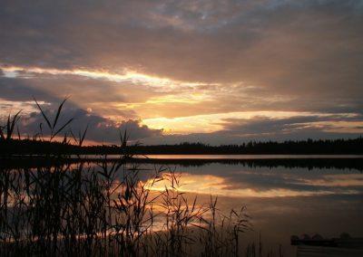 2007_przyroda56