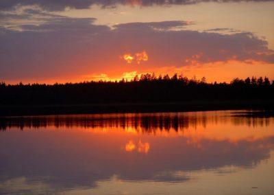 2008_przyroda13