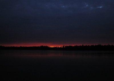 2008_przyroda14