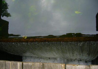 2008_przyroda18