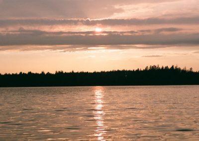 2008_przyroda2