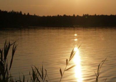 2008_przyroda25
