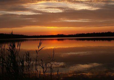2008_przyroda31