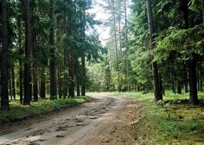 2008_przyroda4