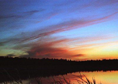2008_przyroda5