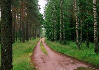 2008_przyroda6