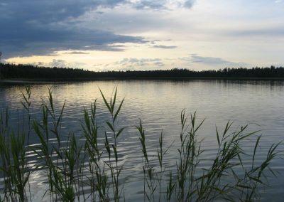 2009_przyroda7