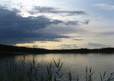 2009_przyroda8
