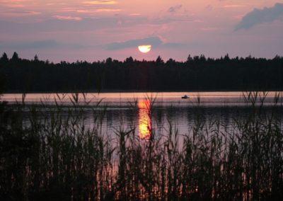 2010_przyroda1