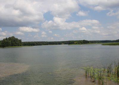2010_przyroda15