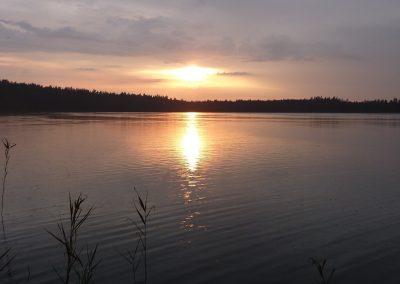 2012_przyroda7